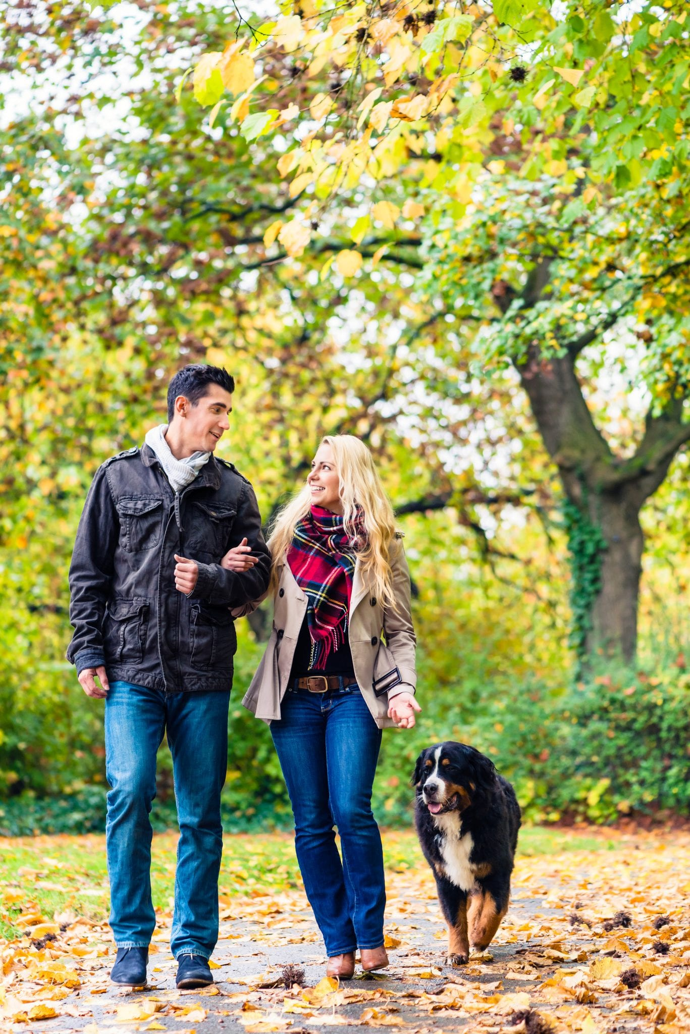 Woman and man with dog having autumn walk on a path covered with foliage